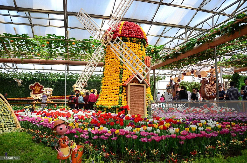 'Holland landscape' shows on the 16th China (Shouguang) International Vegetable Sci-Tech Fair on April 23, 2015 in Weifang, Shandong province of China.