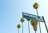 Hollywood Boulevard sign with palm trees