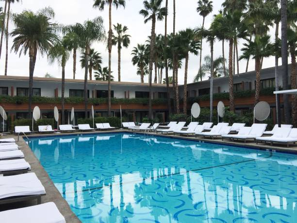 Hollywood Roosevelt Hotel Swimming Pool Pictures Getty Images