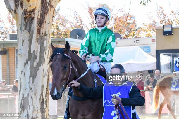 Holy Blade ridden by Jye McNeil before the Murray Downs Golf Country Club 2YO Maiden Plate at Swan Hill Racecourse on June 10 2017 in Swan Hill...