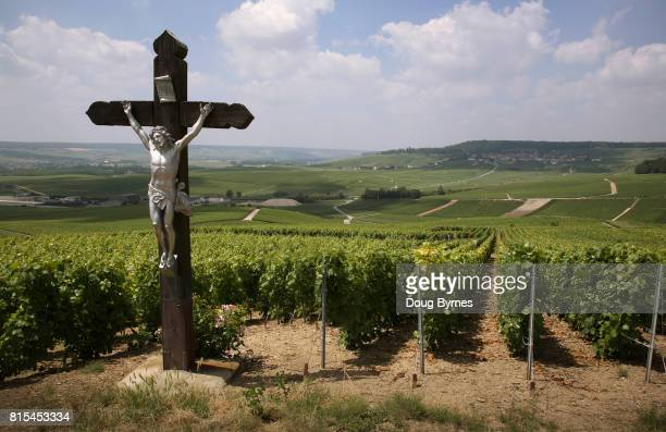 Holy wine - Crucifix guarding over vineyard in France
