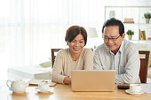 Cheerful senior Asian couple using laptop when distributing family budget