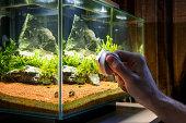 Man scrubbing glass of home decorative aquarium