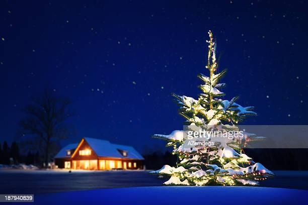 自宅のクリスマス