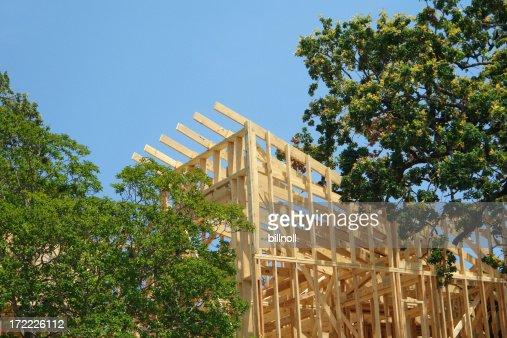 construction de maison dans les arbres
