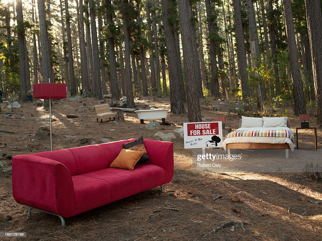 Home furnishings for sale in the middle of the woods : Stock Photo
