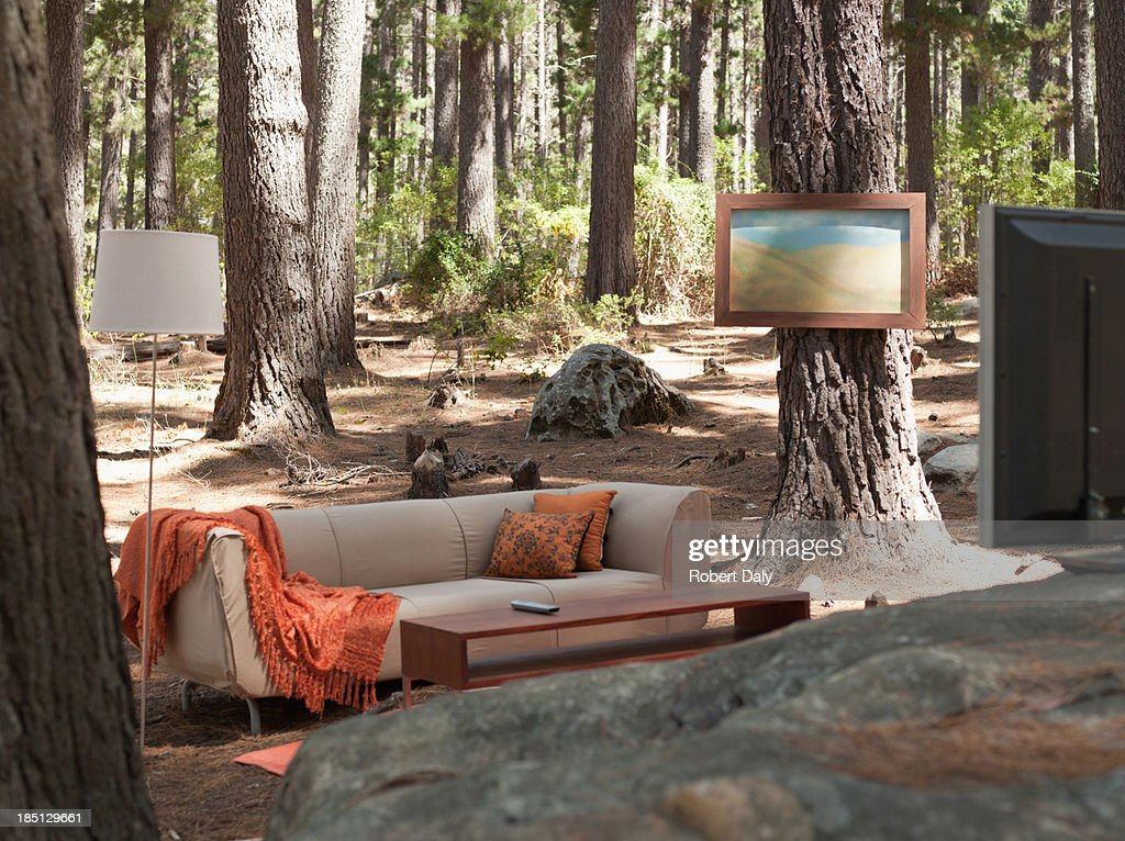 Home furnishings in the middle of the woods : Stock Photo