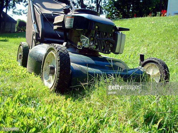 Home Lawn Mower