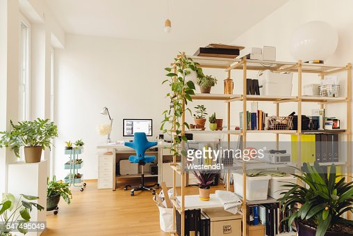 Home office with shelf and plants in modern building