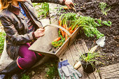 Homegrown Vegetables, Healthy Vegan Lifestyle