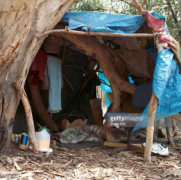 Homeless tent next to tree