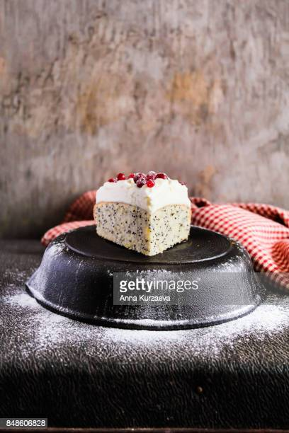 Homemade christmas cake with poppyseed decorated with sweet vanilla whipped cream, fresh cranberry and icing sugar, selective focus