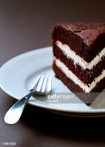 Homemade layered chocolate cake