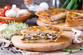 Homemade snack pie with chicken and cheese, horizontal