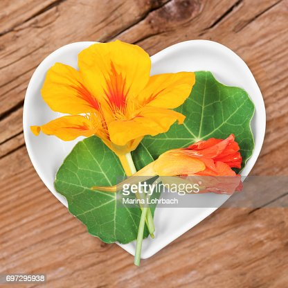 Homeopathy and cooking with nasturtium : Stock Photo