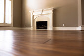 Homes and Architecture:  Lovely handscraped, hardwood flooring in home.  Fireplace, windows.