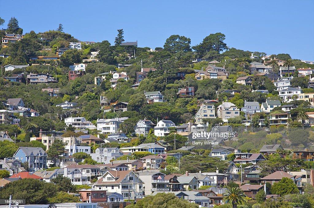 Homes climbing the hillside amid trees