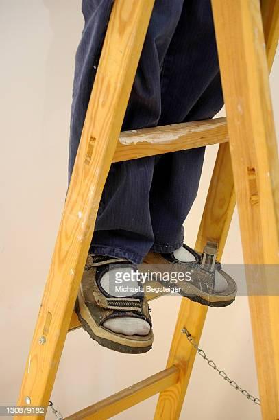 Homeworker on ladder