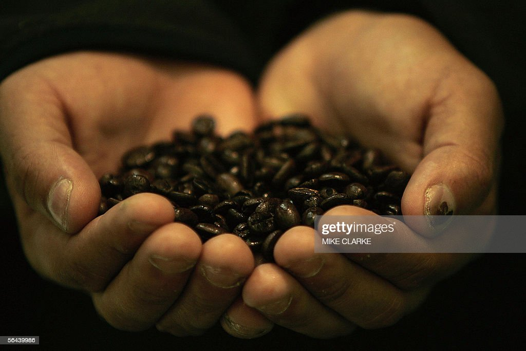 Honduran farmer Dennis Alfredo Cruz shows roasted coffee beans at a Fair Trade event on the sidelines of the World Trade Organization Summit in Hong...
