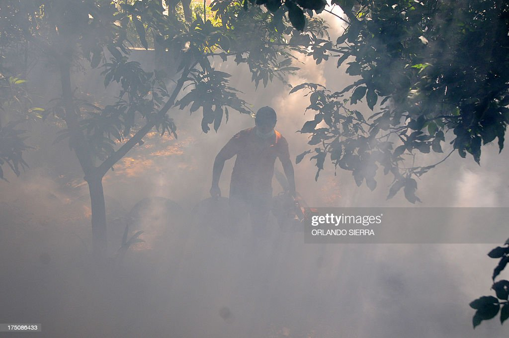 Honduran health personnel fumigate against the Aedes aegipti mosquito, vector of the dengue fever, in Tegucigalpa on July 31, 2013. Honduras is under a national state of emergency because of the dengue epidemy that has affected 12,000 people and caused 16 deaths so far this year. AFP PHOTO /Orlando SIERRA.