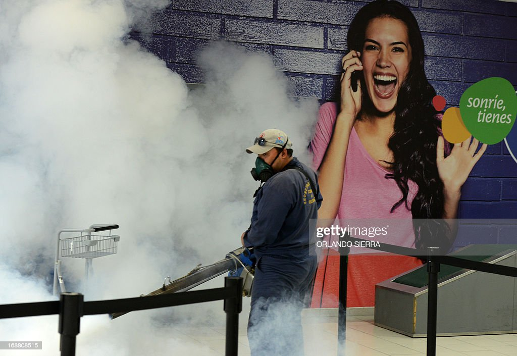 Honduras' Health Ministry personnel fumigates against the mosquito dengue in Tegucugalpa, on May 15, 2013. AFP PHOTO/Orlando SIERRA.