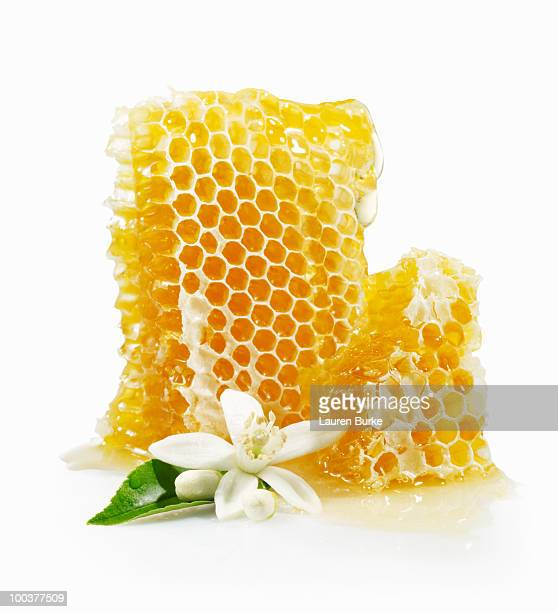 Honey with Orange Blossom