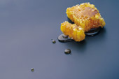 honey bee flows out of honeycomb on a black background