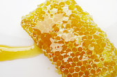 honey bee flows out of honeycomb on a white background