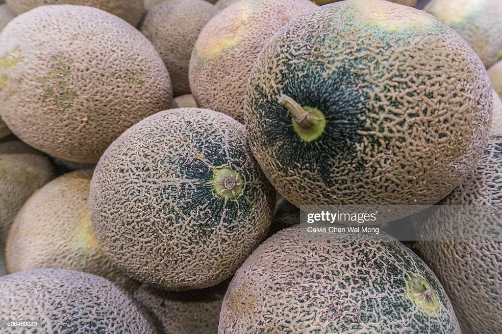 Honeydew melons - Cantaloupe fruit for sale in market stall