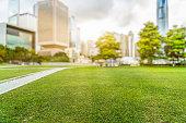 Hong Kong city skyline and green lawn at daytime.