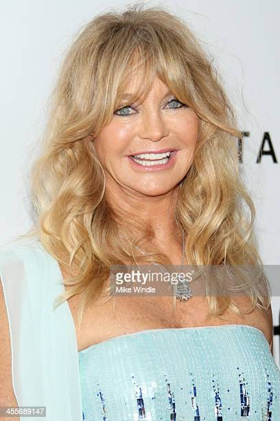 Honoree Goldie Hawn attends the 2013 amfAR Inspiration Gala Los Angeles at Milk Studios on December 12 2013 in Los Angeles California