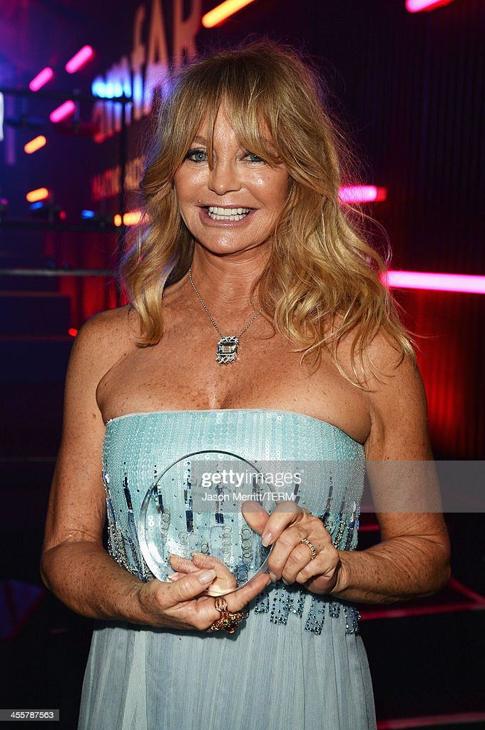 Honoree <a gi-track='captionPersonalityLinkClicked' href=/galleries/search?phrase=Goldie+Hawn&family=editorial&specificpeople=171422 ng-click='$event.stopPropagation()'>Goldie Hawn</a> attends the 2013 amfAR Inspiration Gala Los Angeles presented by MAC Viva Glam at Milk Studios on December 12, 2013 in Los Angeles, California.
