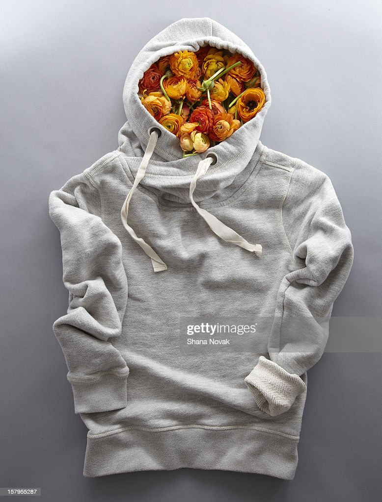 Hoodie Filled With Ranunculus Blossoms : Stock Photo