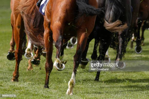 Hooves at Windsor Racecourse on April 10 2017 in Windsor England