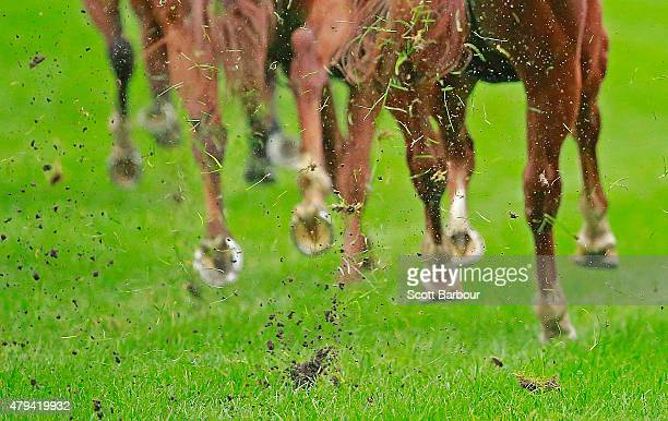 Hooves kick up the surface as a bend is taken during the Wilson Medic One Handicap during TAB National Jockeys' Trust Race Day at Caulfield...