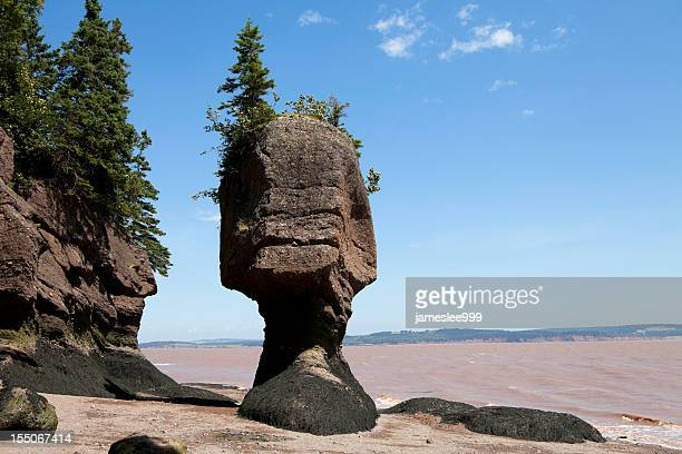 Hopewell Flower Pot Rocks