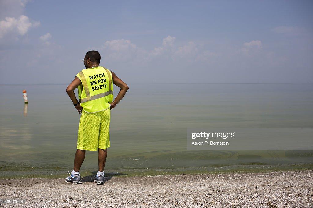 Horacio Romero of Toledo Ohio looks at algae in Lake Erie at Maumee Bay State Park August 4 2014 in Oregon Ohio Toledo Ohio area residents were once...