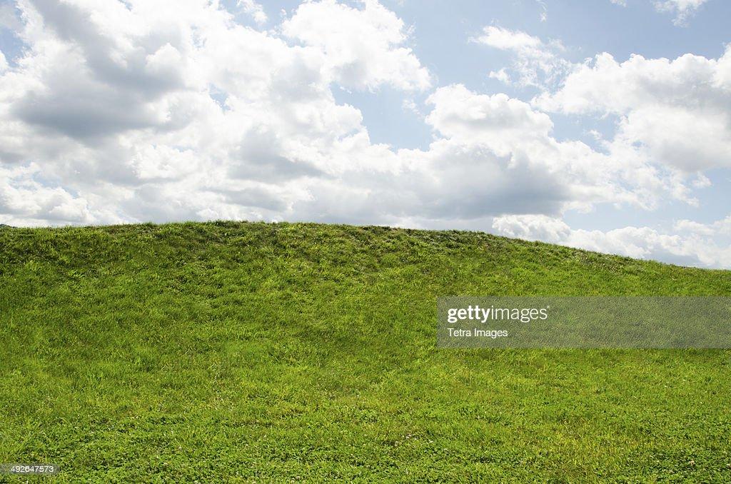 Horizon over green grass, Mountainville, New York State, USA