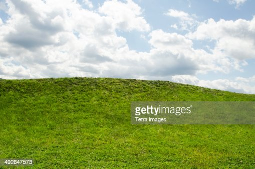 Horizon over green grass, Mountainville, New York State, USA