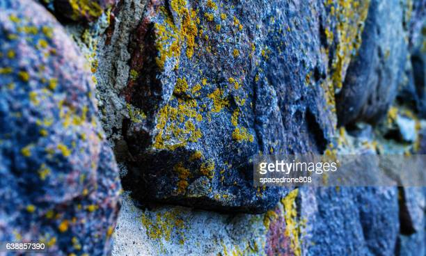 Horizontal vibrant acid moss stones rock texture bokeh background