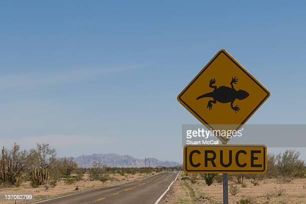 Horned toad crossing sign