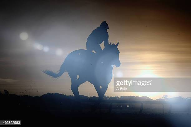 A horse and exercise rider train at sunrise on the main track at Belmont Park on June2 2014 in Elmont New York