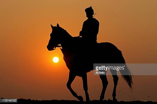 A horse and exercise rider work on the track during a morning training session in preparation for The Belmont Stakes at Belmont Park on June 9 2011...