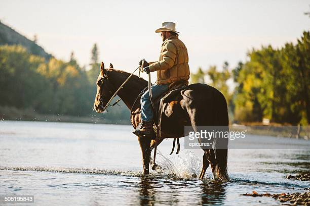 Horse and male rider wade in water along river bank