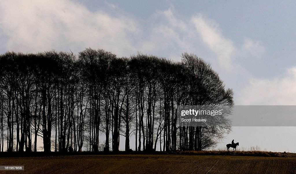 A horse and rider approach the stables during a stable visit to Seven Barrows with Nicky Henderson on February 18, 2013 in Lambourn, England.
