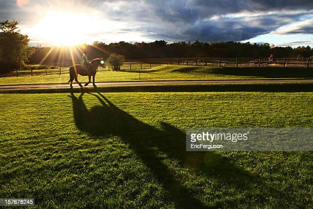 馬とライダーの夕日