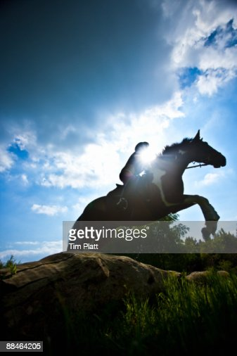 Horse and rider jumping over a log. : Stock Photo