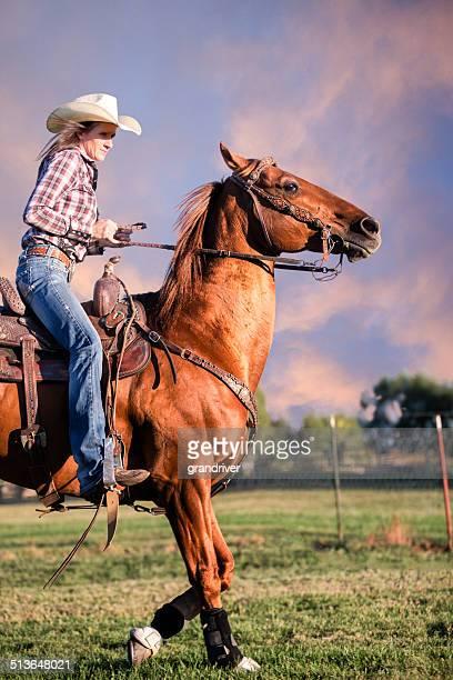 Cavalo e Rider