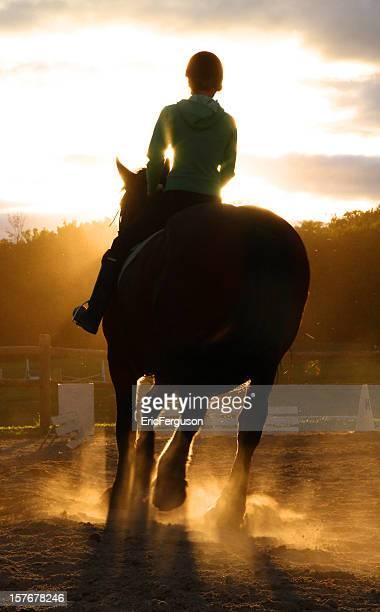 Cavalo e Rider Silhouetted ao pôr do sol