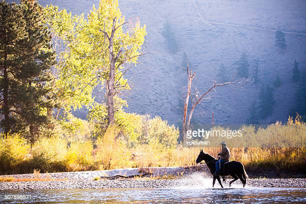 Horse and rider wade in water along western river bank